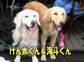 けん太&海斗くん.jpg